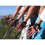 Палки для скандинавской ходьбы: как правильно выбрать